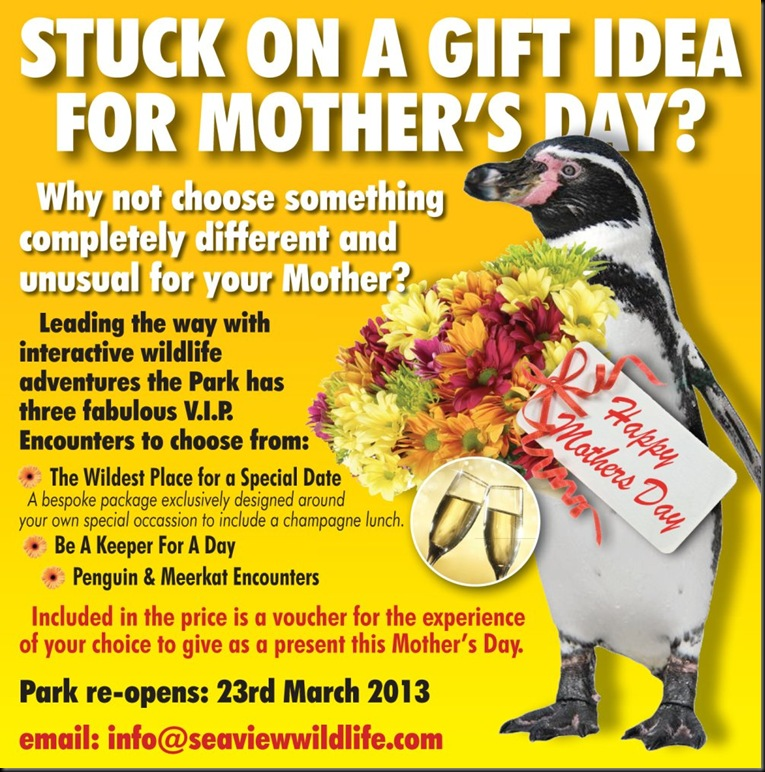 SWE Mothers Day web ad '13