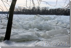 Ice on the Susquehanna River, 2/2014, by Sue Reno, Image 11