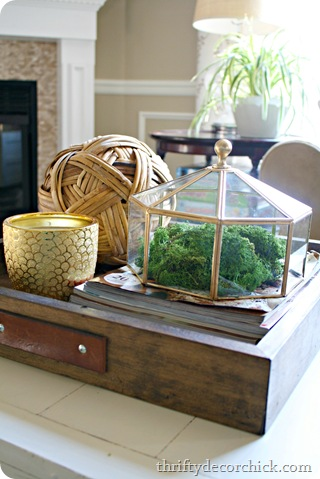 light fixture terrarium