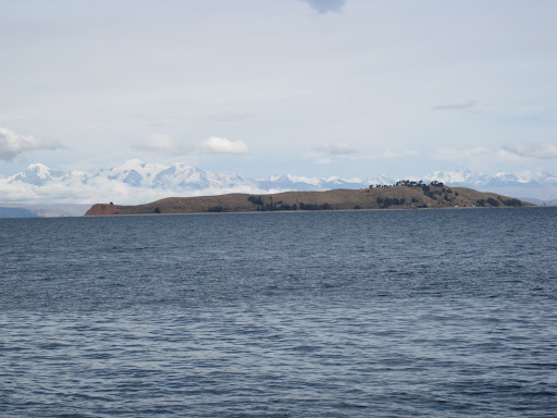 An island with snow-covered Andes mountains in the background.