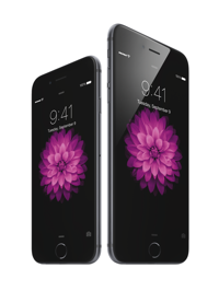 IPhone6 34R SpGry iPhone6Plus 34L SpGry flwr