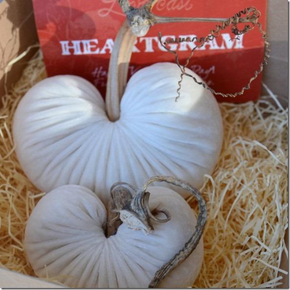 HeartGramSetWhite-590x590