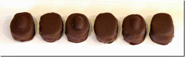 Healthy Almond Joy/Mounds Candy