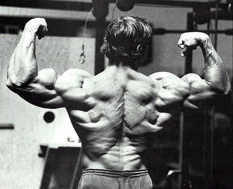 arnold-scwarzenegger-back-pose