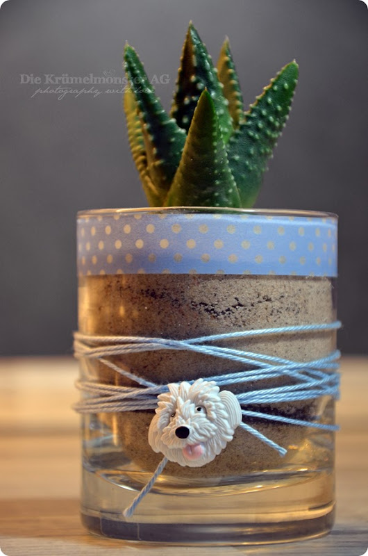 DIY Kaktustöpfchen (3)