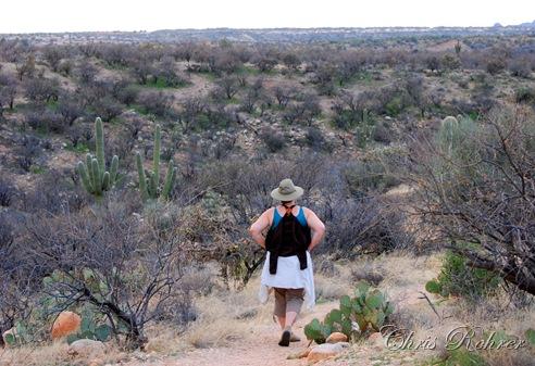 8. hiking-rohrer