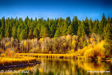 Deschutes River 11-2-2014 - 2