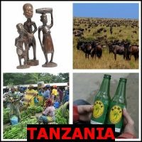 TANZANIA- Whats The Word Answers