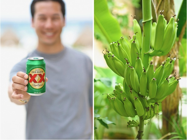 Justin beer and banana tree