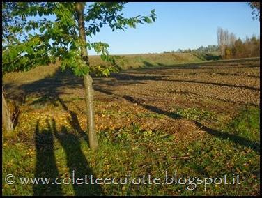 OrtoLà - 26 novembre 2013 (16)