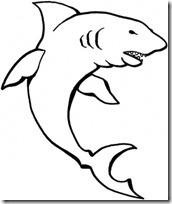 tiburon blogcolorear (3)