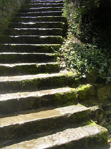 Old stairs to valley
