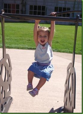 09-03-2011 1056 raven hanging