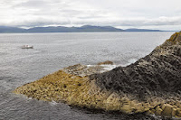 Luca_vanDuren_Staffa - boat and basking shark in background.JPG