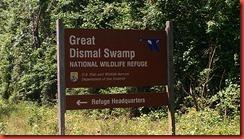 Great Dismal Swamp 1