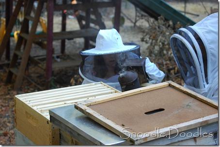 Beekeepers 09-11 016