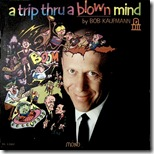 Bob Kaufmann - A Trip through A Blown Mind
