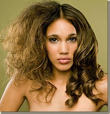 Remedios Caseros para el cabello Frizz