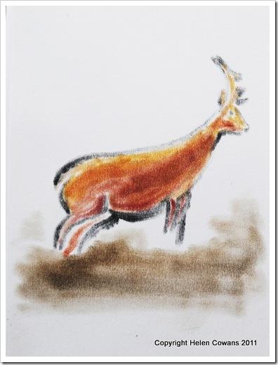 Deer 1a 30-01-2012 14-45-00 1705x2268