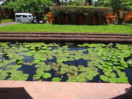 Luna de miere Thailanda: Lotus la Hua Hin