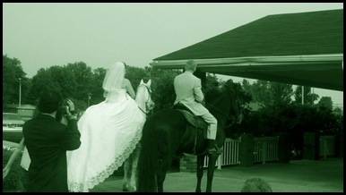 horse - dress back and veil