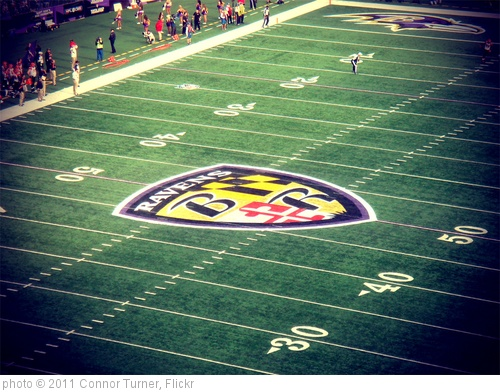 'Ravens: Maryland Pride' photo (c) 2011, Connor Turner - license: http://creativecommons.org/licenses/by-sa/2.0/