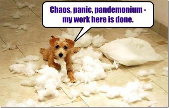 panic-stress-bad-2