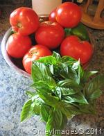 tomato sauce 813 (6)
