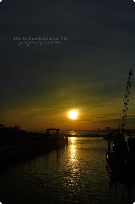Bremerhavenrundfahrt 261113 (17)