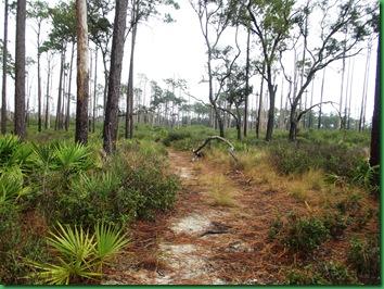Pat's Island Trail 018