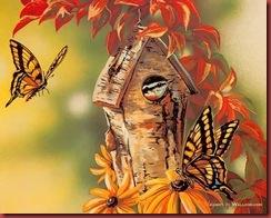 Grende_Janene_2000_SongBirds_Birds-12_wallcoo.com