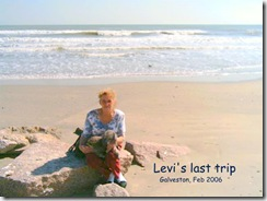 Last day at Galveston (Small)