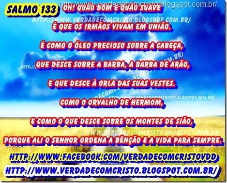SALMOS  133