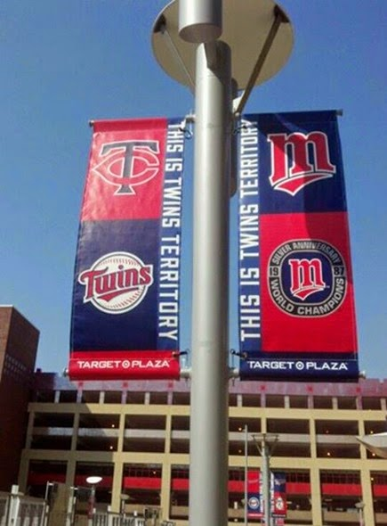 Twins flags