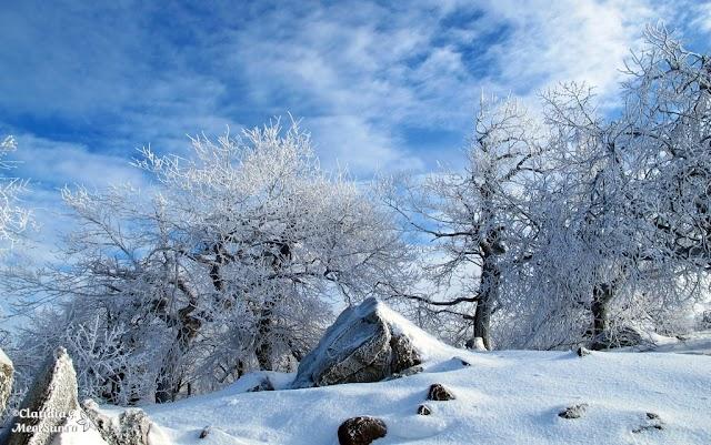 Macin-iarna-28_rw.jpg