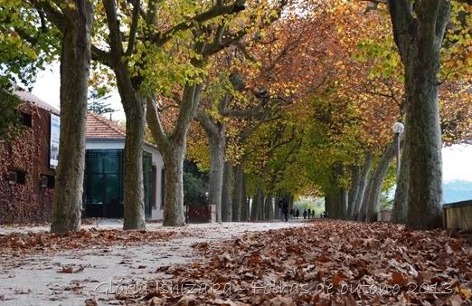 Glória Ishizaka - Folhas de Outono 4
