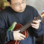 KOYAMA KYM-C12 bird.jpg