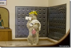 Picking up the mail gopher