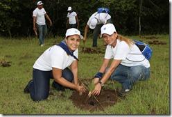 Alrededor de 400 empleados de varias filiales del Grupo Popular participaron en esta jornada de siembra en apoyo del Plan Sierra.