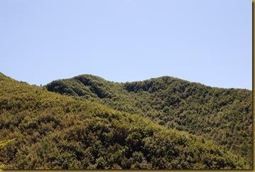 Monte Gemelli
