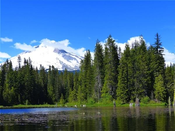 14 Trillium Lake 011