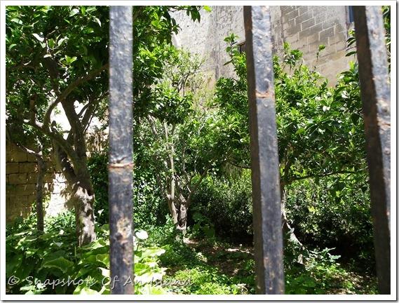 Medieval Mdina (67)