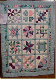 My Beginner Sampler Quilt Janice B
