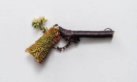 Armas de plantas (6)