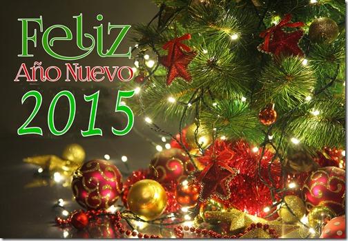 2015año nuevoD