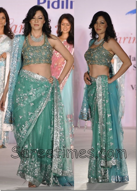 Aditi_Govitrikar_Embroidery_Saree