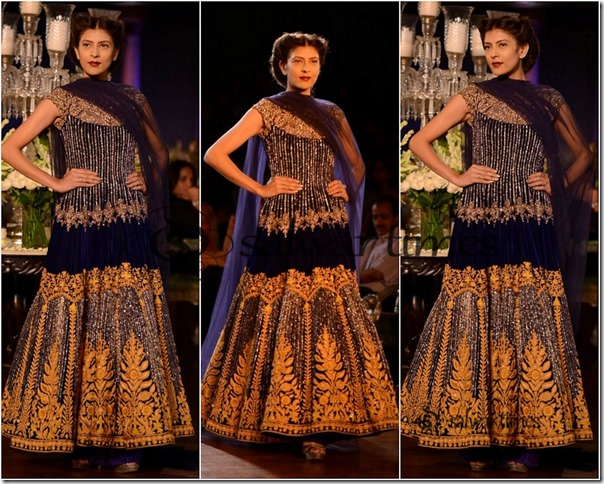 Manish_Malhotra_Delhi_Couture_week_2013 (5)