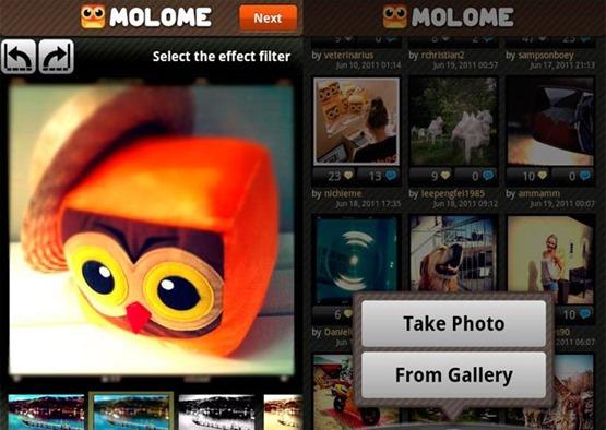 molome-2