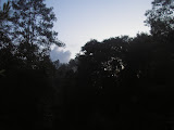 First light, somewhere very close to the dense forest summit of Samosir (Daniel Quinn, April 2011)