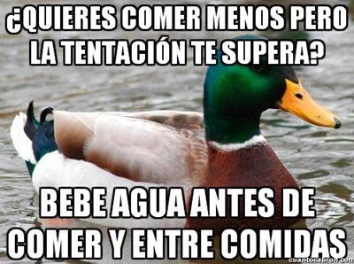 consejos del pato (7)